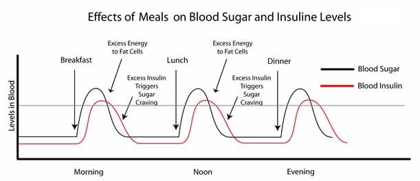 InsulinGraph